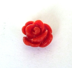 Rose de Corail Rouge 8mm